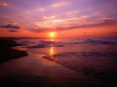 Newport_Beach_Sunrise_California_large
