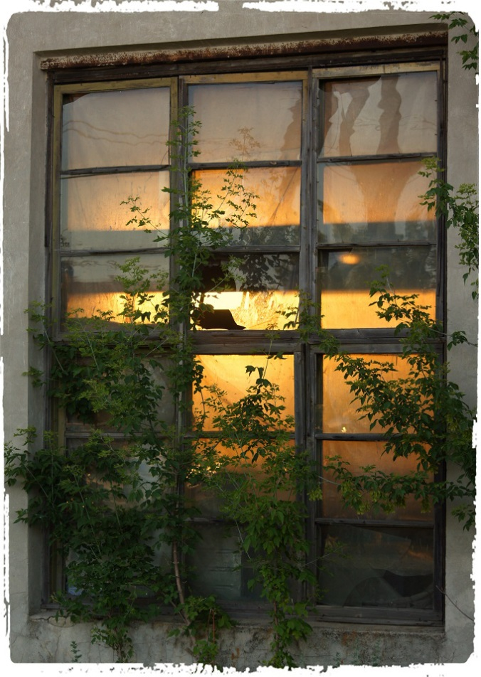 Sunset through windows.jpg